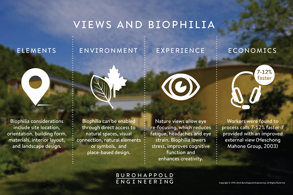 This image has an empty alt attribute; its file name is HWPBlog5_Views-and-Biophilia.jpg