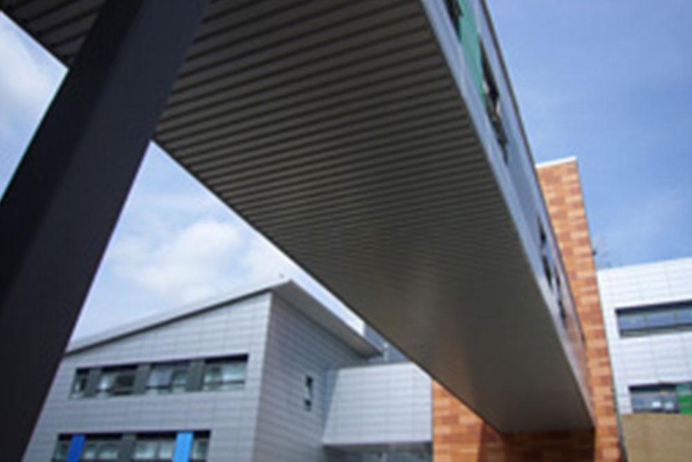 Queen Alexandra Hospital Link Bridge Burohappold Engineering
