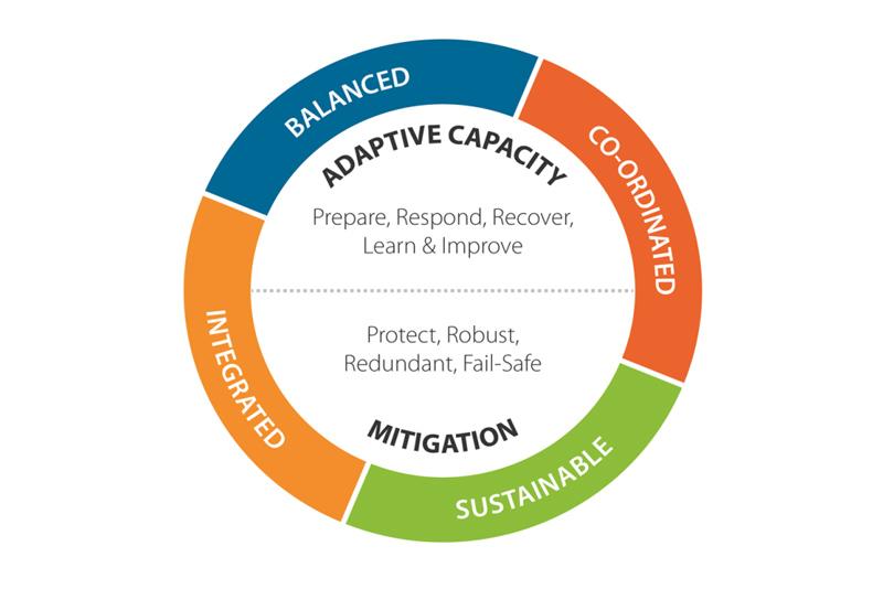 resilience plan diagram