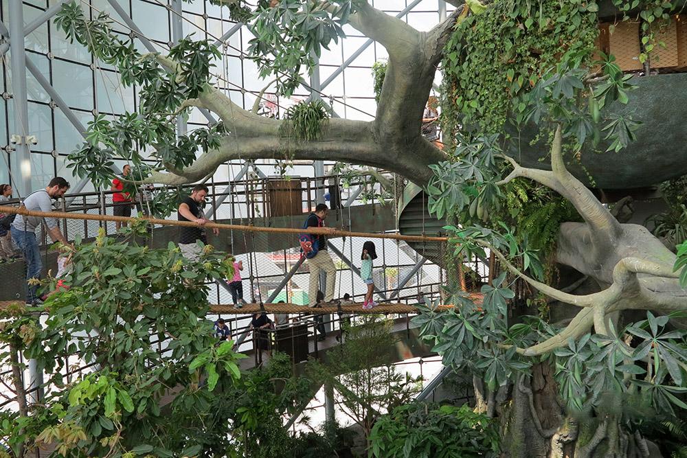 Green Planet Dubai - Buro Happold