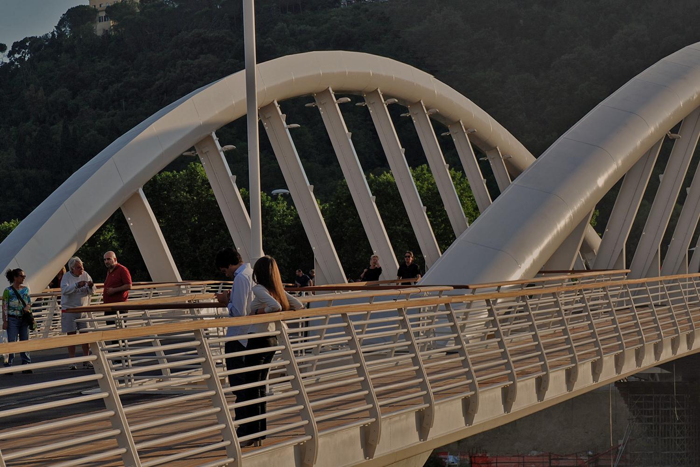 Ponte Della Musica bridge