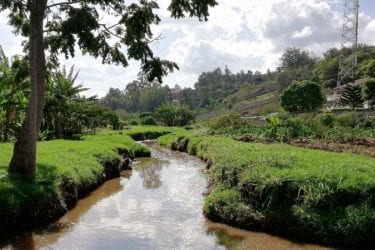 Nairobian river winding into the distance, surrounded by green banks