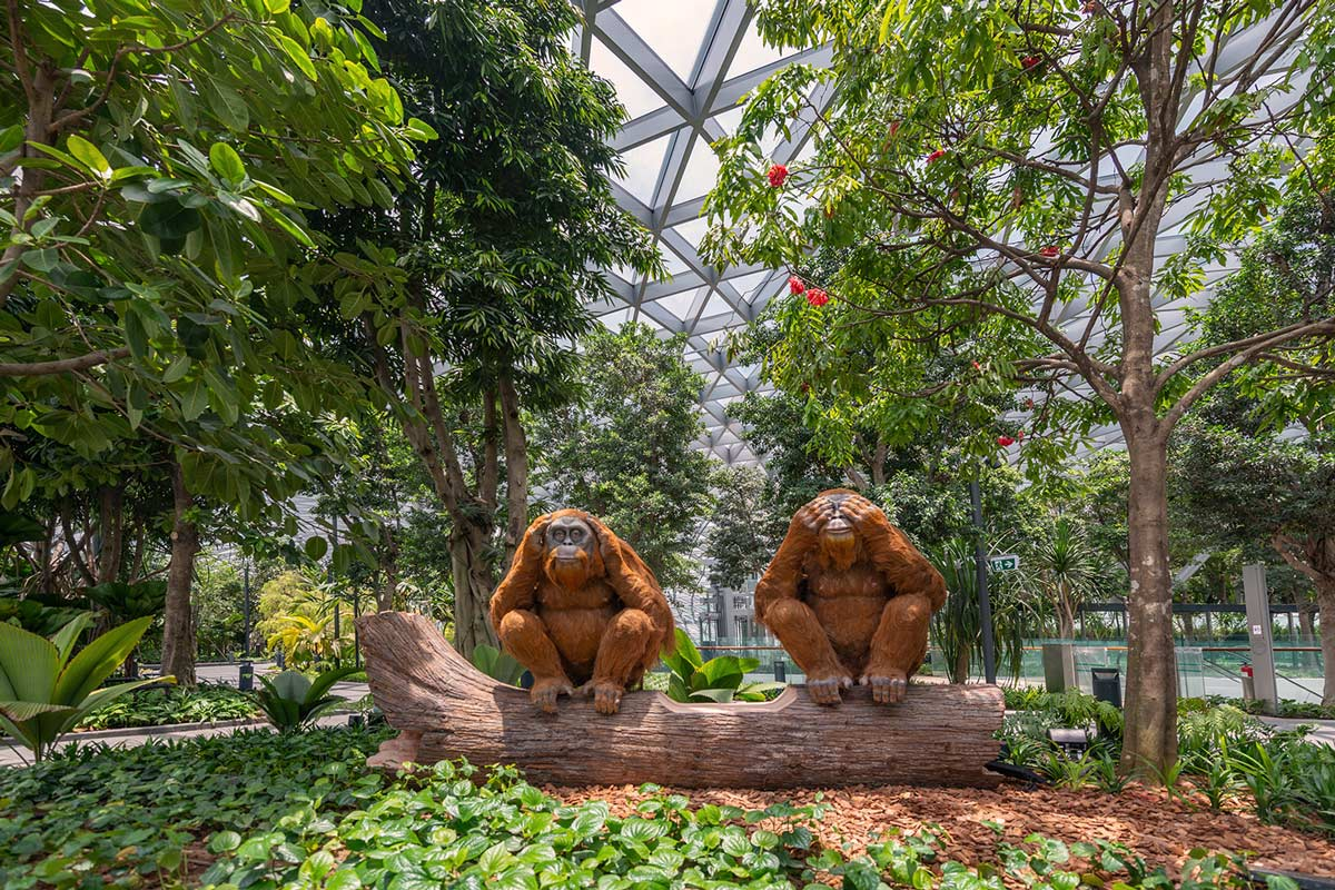 Discovery Slides at Canopy Park (Jewel Changi Airport)