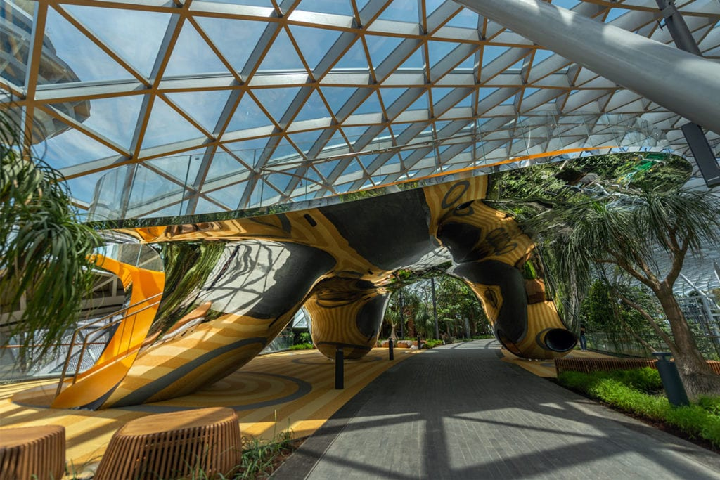Discovery Slides at Canopy Park
