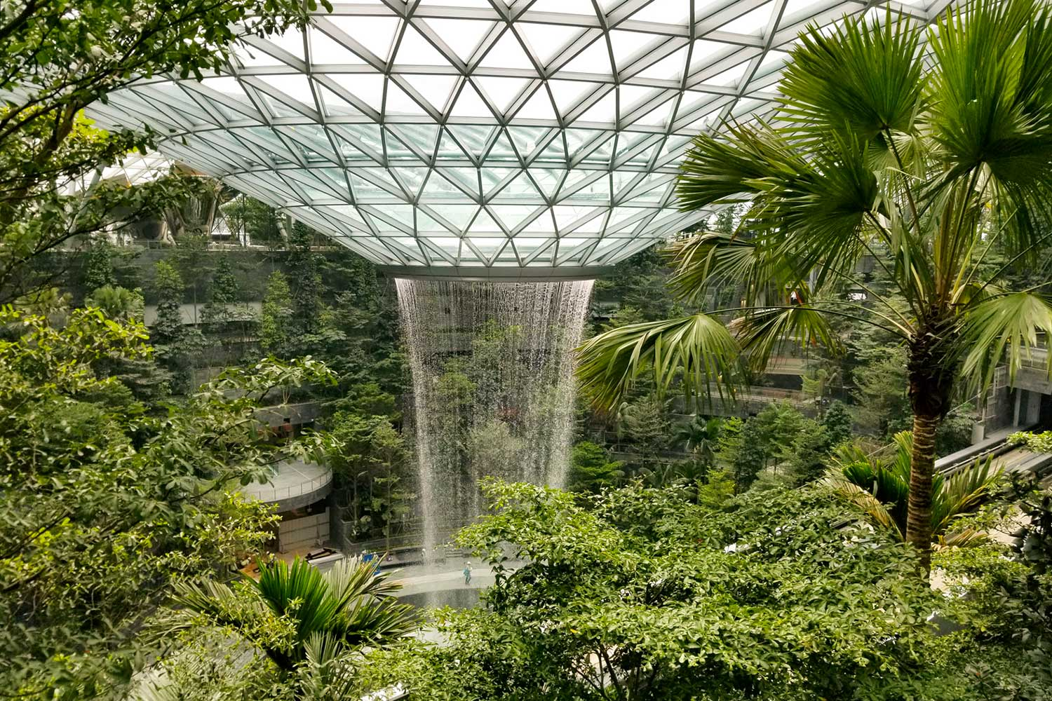 Jewel Changi Airport's indoor waterfall, viewed through the building's trees and greenery