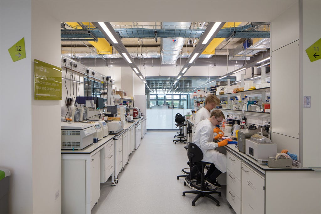 Scientists conducting research in the labs in the Quadram Institute