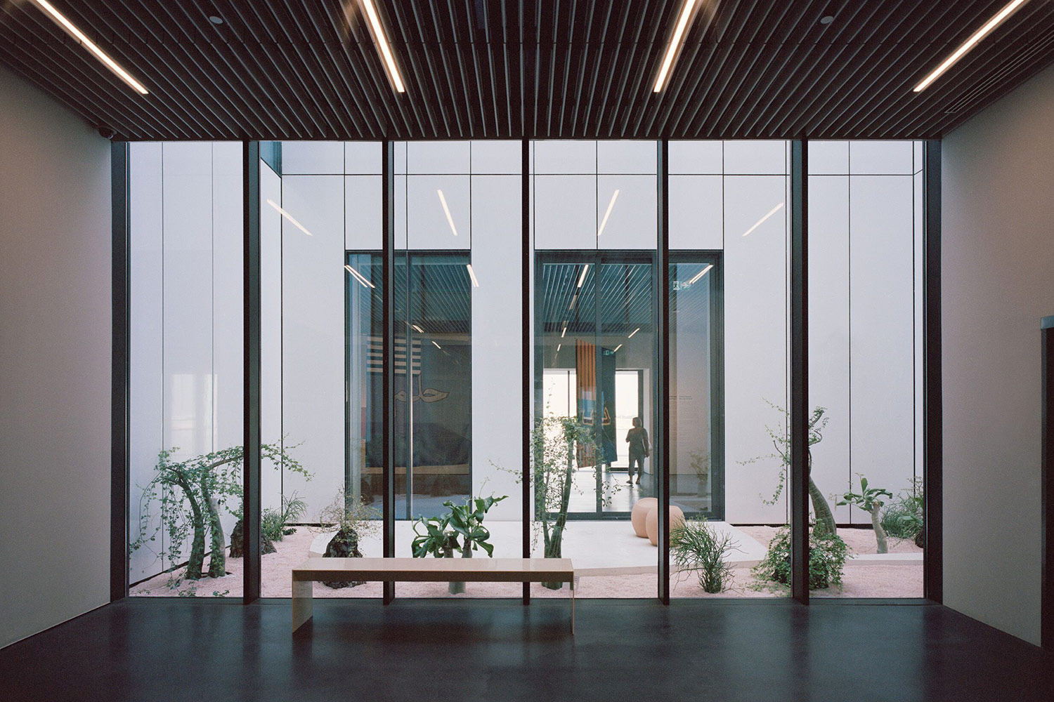 Looking out of the floor to ceiling glass wall in the Jameel Arts Centre to the desert garden beyond